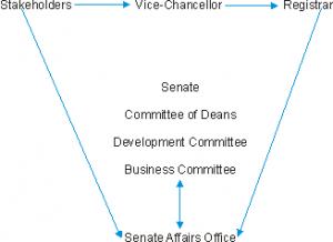 Senate Organigram